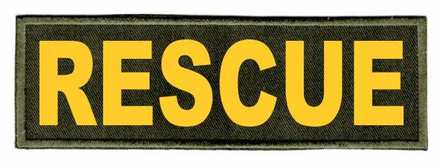 RESCUE ID Patch - 6x2 - Gold Lettering - OD Green Twill Backing